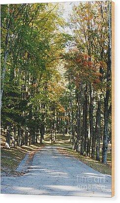 Autumn Drive Wood Print by Barbara Bardzik