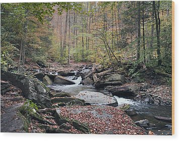 Autumn Drizzle On Kitchen Creek Wood Print by Gene Walls