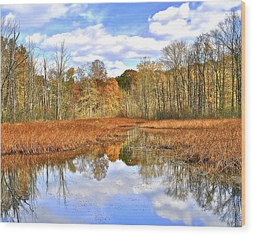 Autumn Fades Wood Print by Frozen in Time Fine Art Photography