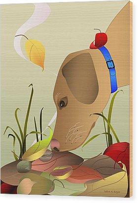 Autumn Find Wood Print by Debra Boyle