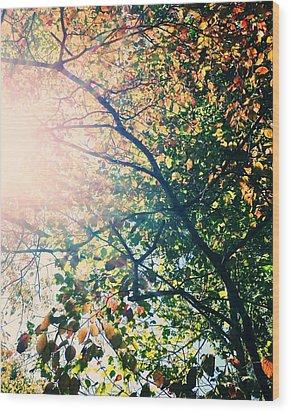 Autumn Flame Wood Print by Kim Fearheiley