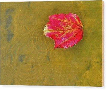 Autumn Floats Wood Print