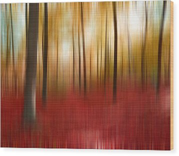 Autumn Forest Wood Print by Angela Bruno