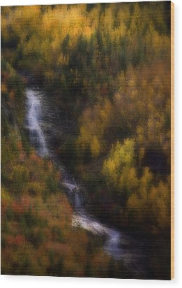 Wood Print featuring the photograph Autumn Forest Falls by Ellen Heaverlo