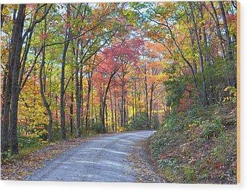 Autumn Forest Trail Wood Print by Bob Jackson
