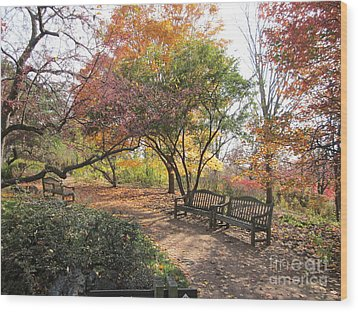Autumn Garden Wood Print
