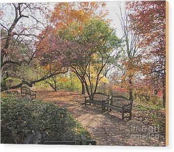 Autumn Garden Wood Print by Kathie Chicoine