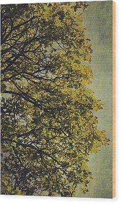 Wood Print featuring the photograph Autumn Glory by Ari Salmela
