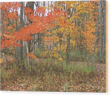 Autumn Golds Wood Print by Margaret McDermott