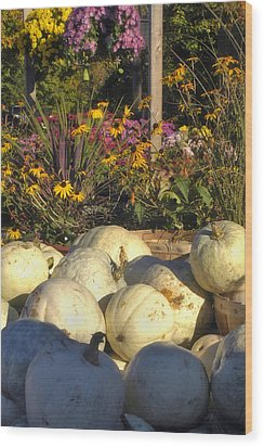 Autumn Gourds Wood Print by Joann Vitali