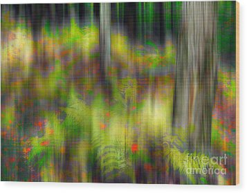 Autumn Grace - A Tranquil Moments Landscape Wood Print by Dan Carmichael