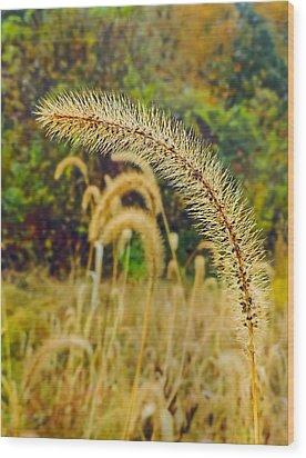 Autumn Grass Wood Print