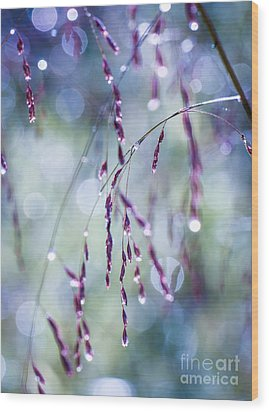Autumn Grasses Wood Print by Amy Porter