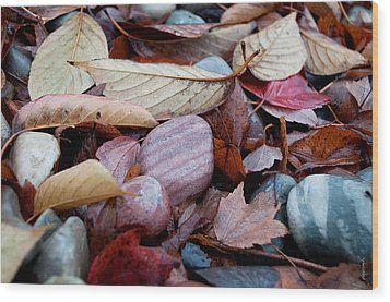 Wood Print featuring the photograph Autumn Greatness by Gwyn Newcombe