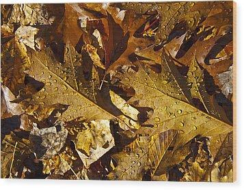 Autumn Groundcover Wood Print