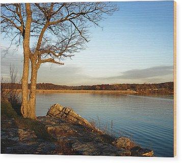 Autumn Guardian Of The Lake Wood Print