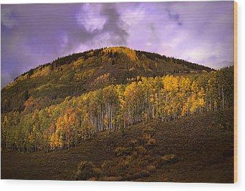 Wood Print featuring the photograph Autumn Hillside by Ellen Heaverlo