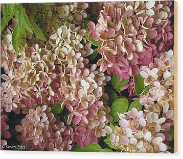 Autumn Hydrangeas Wood Print by Sandra Estes