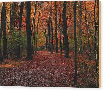 Autumn IIi Wood Print