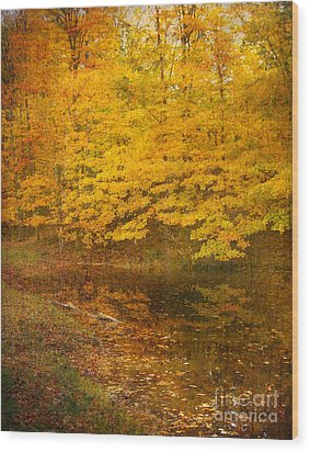 Autumn Impressions Wood Print by Kathi Mirto