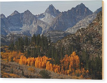 Autumn In Bishop Canyon In The Eastern Sierras Wood Print by Jetson Nguyen