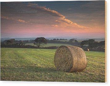 Autumn In Cornwall Wood Print by Christine Smart