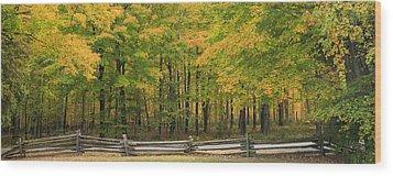 Autumn In Door County Wood Print by Adam Romanowicz