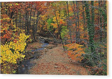 Autumn In Full Bloom Wood Print by Frozen in Time Fine Art Photography