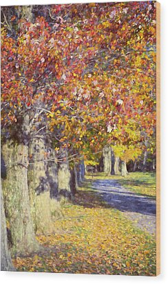 Autumn In Hyde Park Wood Print