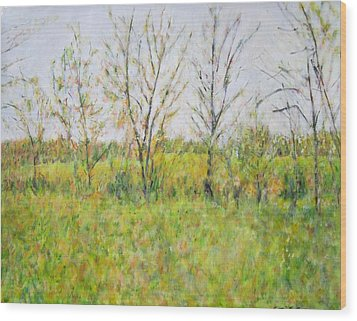 Autumn In Kentucky Wood Print