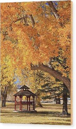 Autumn In La Veta Wood Print by Pattie Calfy