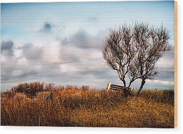 Autumn In Maine Wood Print by Bob Orsillo