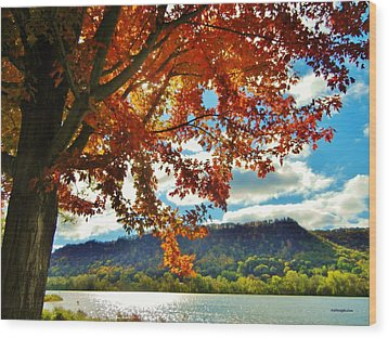 Autumn In Minnesota Wood Print