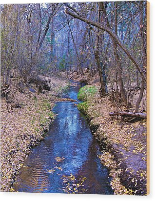 Wood Print featuring the photograph Autumn In New Mexico by John Babis