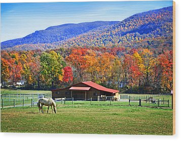 Autumn In Rural Virginia  Wood Print