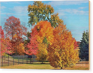 Autumn In The Air Wood Print by Judy Palkimas