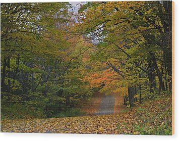 Autumn In The Caledon Hills Wood Print