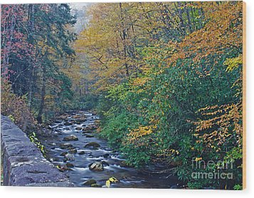 Autumn In The Great Smoky Mountains V Wood Print