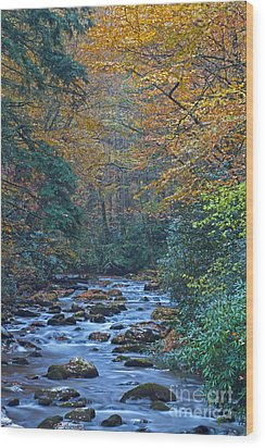 Autumn In The Great Smoky Mountains Vi Wood Print