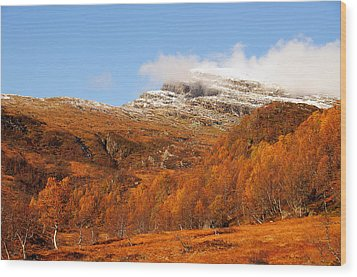Autumn In The Mountains Wood Print by Gry Thunes