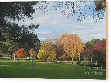 Wood Print featuring the photograph Autumn In The Park by Leanne Seymour