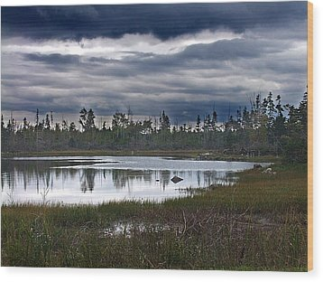 Autumn In The Salt Marshes Wood Print by George Cousins