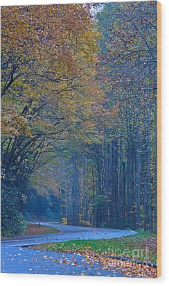 Autumn In The Smoky's  Wood Print