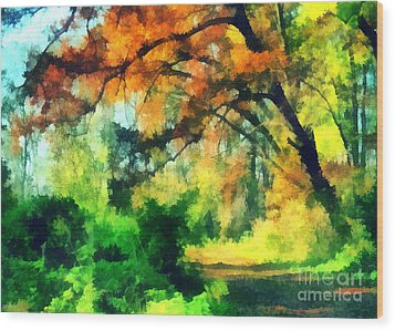 Autumn In The Woods Wood Print by Odon Czintos