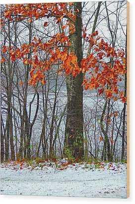 Autumn In Winter Wood Print by Julie Dant