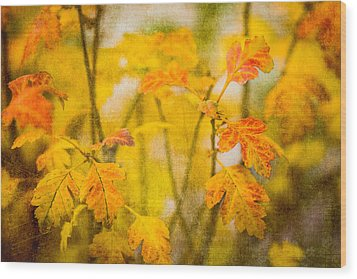 Autumn In Yellow Wood Print by Alexander Senin