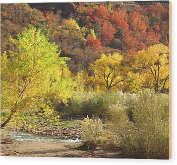 Wood Print featuring the photograph Autumn In Zion by Alan Socolik