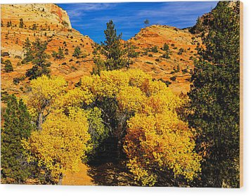 Autumn In Zion Wood Print by Greg Norrell