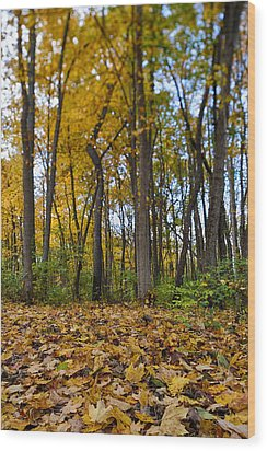 Wood Print featuring the photograph Autumn Is Here by Sebastian Musial