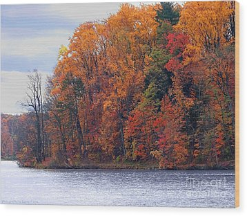Autumn Is Upon Us Wood Print by Gena Weiser
